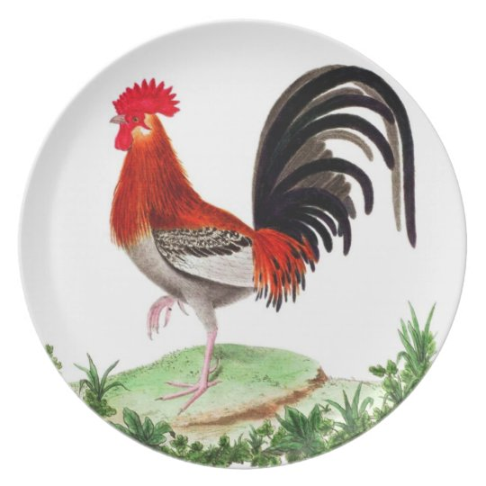 Rooster Dinnerware - French Country Home Decor Dinner