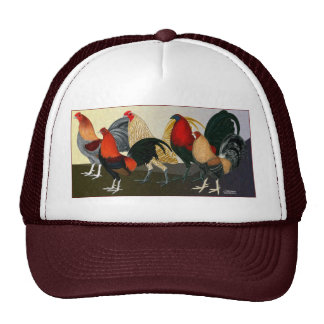 Rooster Dream Team Hat