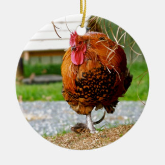 Rooster Farm Animals Nature Photography Round Ceramic Decoration