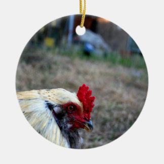 rooster foreground photo farm poultry bird animal christmas ornaments