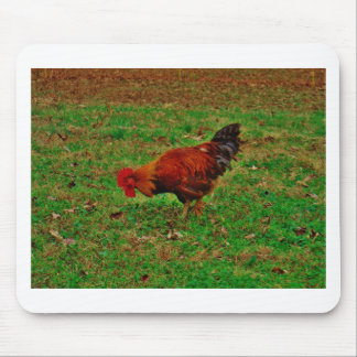 Rooster in the Grass Mousepad