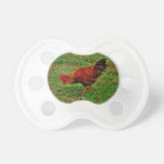 Rooster in the Grass Pacifier