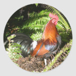Rooster In The Leaves Stickers