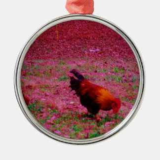 Rooster in the Purple Grass Ornaments