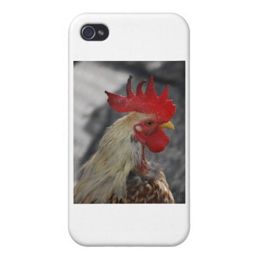 rooster iPhone 4/4S covers
