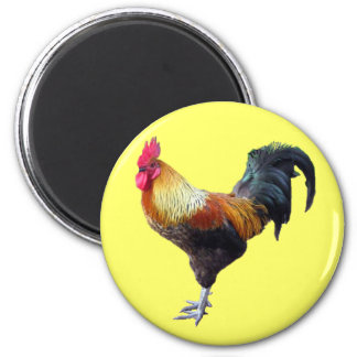 Rooster plain 6 cm round magnet