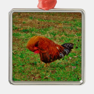 Rooster Preening Christmas Ornament