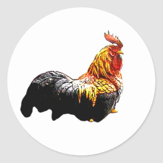 Rooster Proud The MUSEUM Zazzle Gifts Round Sticker