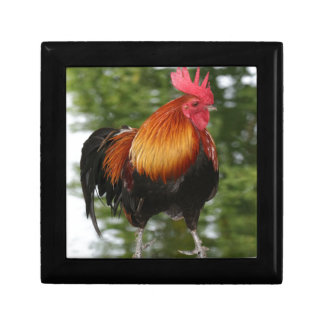 Rooster Small Square Gift Box