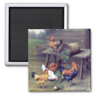Rooster Turnip Basket Hens Square Magnet
