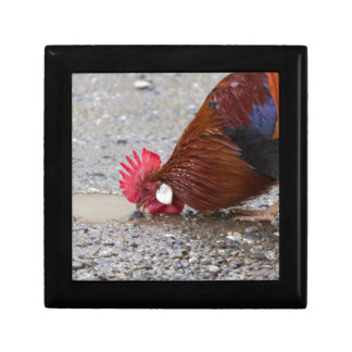 roosters in the farm small square gift box
