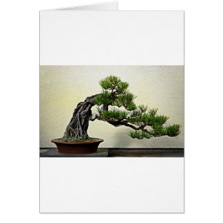 Root Over Rock Pine Bonsai Tree Greeting Card