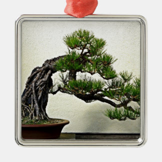 Root Over Rock Pine Bonsai Tree Silver-Colored Square Decoration