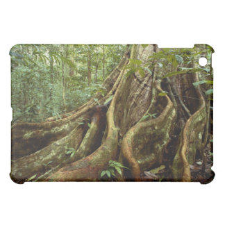 Roots and Trunk of Sloanea Tree Cover For The iPad Mini