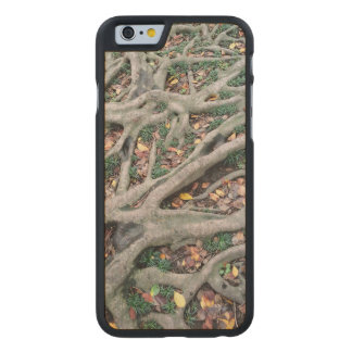 Roots, green grass and fallen off leaves carved® maple iPhone 6 slim case