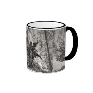 Roots Mugs