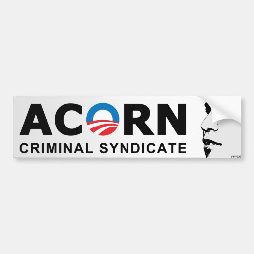 Roots of Corruption Bumper Stickers