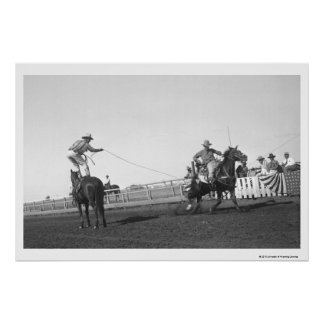 Roping horse poster