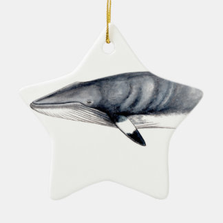 Rorcual aliblanco Christmas adornment Minke whale Christmas Ornament