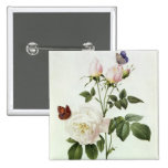 Rosa: Bengale the Hymenes 15 Cm Square Badge