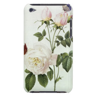 Rosa: Bengale the Hymenes, from 'Les Roses' iPod Touch Cases