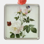 Rosa: Bengale the Hymenes Silver-Colored Square Decoration