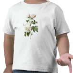 Rosa: Bengale the Hymenes T-shirt
