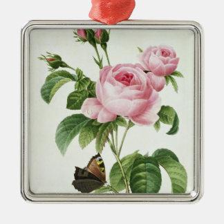 Rosa Centifolia Silver-Colored Square Decoration
