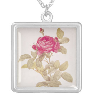Rosa Gallica Pontiana, from 'Les Roses' Silver Plated Necklace