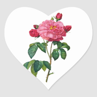 Rosa Gallica - Red Rose by Redoute Heart Sticker