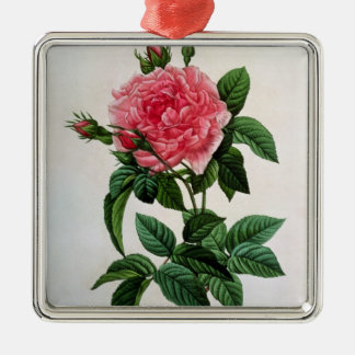 Rosa Gallica Regallis Christmas Ornament