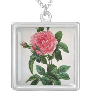 Rosa Gallica Regallis Silver Plated Necklace