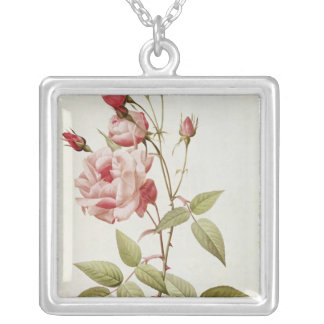 Rosa Indica Vulgaris, from 'Les Roses' Silver Plated Necklace