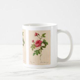 Rosa Inermis, Pierre Joseph Redouté Basic White Mug