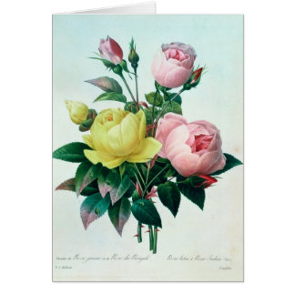 Rosa Lutea and Rosa Indica Card