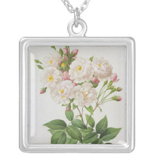 Rosa Noisettiana, from'Les Roses' Silver Plated Necklace