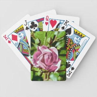 Rosa Rose, Nature Card Decks
