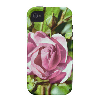 Rosa Rose, Nature iPhone 4/4S Cases