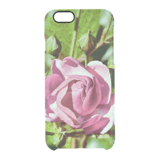 Rosa Rose, Nature Clear iPhone 6/6S Case