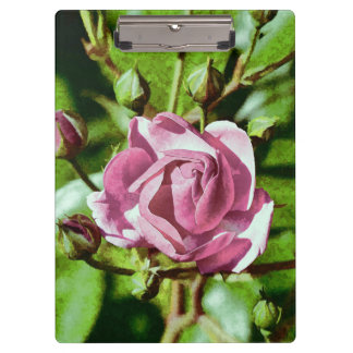Rosa Rose, Nature Clipboard