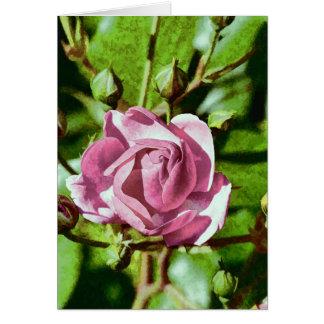 Rosa Rose, Nature Greeting Card