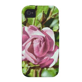 Rosa Rose, Nature iPhone 4/4S Cases