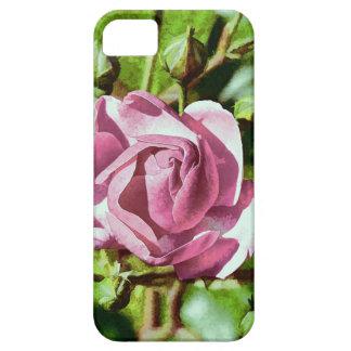 Rosa Rose, Nature iPhone 5 Case