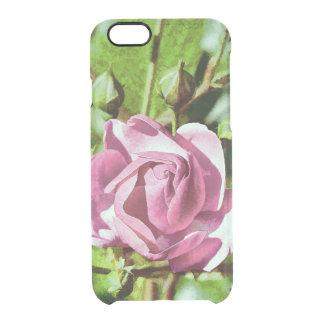 Rosa Rose, Nature iPhone 6 Plus Case