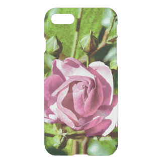 Rosa Rose, Nature iPhone 7 Case
