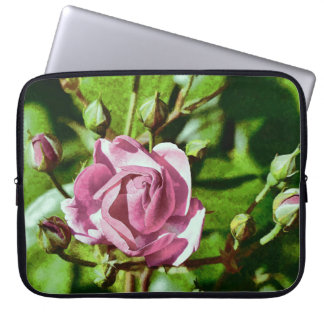 Rosa Rose, Nature Laptop Computer Sleeves