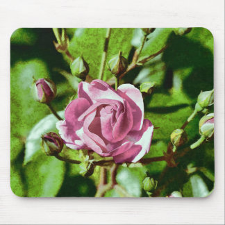 Rosa Rose, Nature Mouse Pad