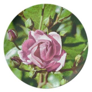 Rosa Rose, Nature Plates
