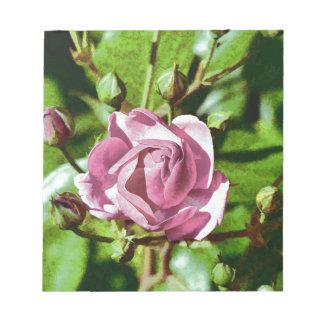 Rosa Rose, Nature Scratch Pads