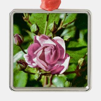 Rosa Rose, Nature Silver-Colored Square Decoration